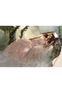 Woodbridge Wedding Bridal Gowns Alfred Angelo  SLEEPING BEAUTY   Style 218